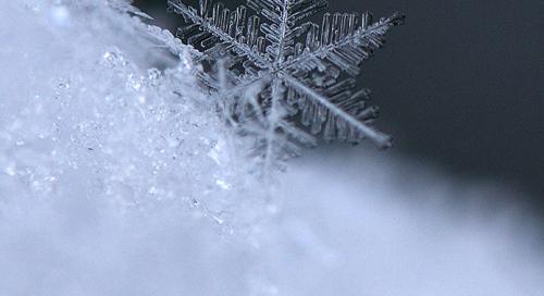 Lumehelves veidi lähemalt