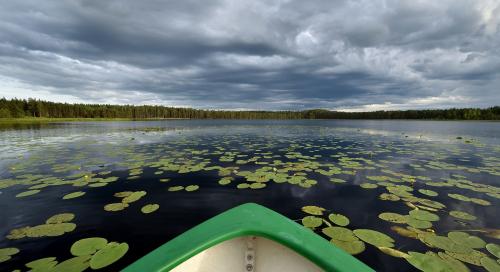 Meelva järv
