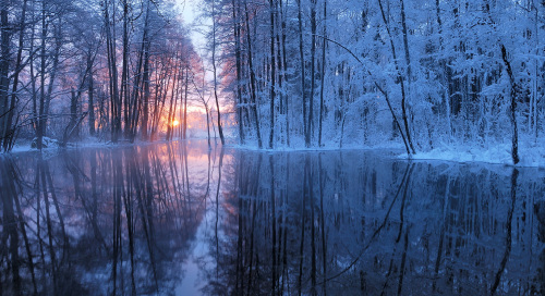 Talve võlumaa