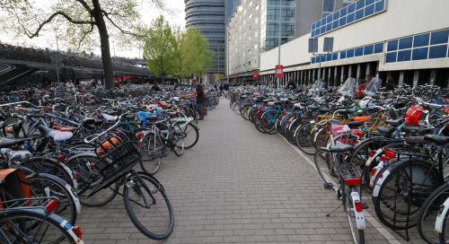 Natuke jalgrattaid